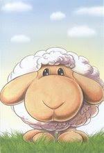84033-sheepcard
